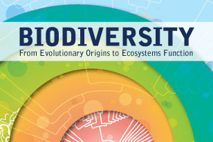 Bicentennial Symposium graphic, Biodiversity: From Evolutionary Origins to Ecosystem Functions