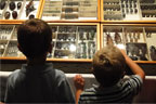 Two boys looking at trays of insect specimens