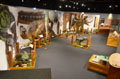 dinosaur petting area, Tiny Titans exhibit. Credit: The Stone Company