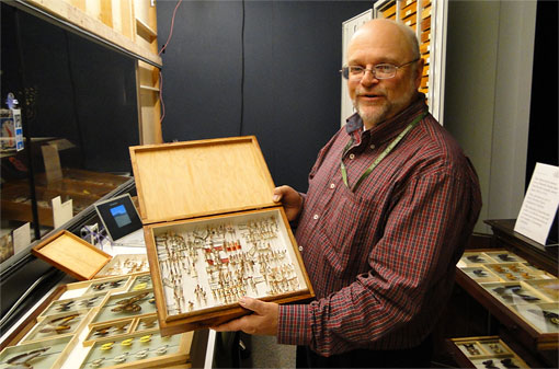 photo on entomologist with insect specimens