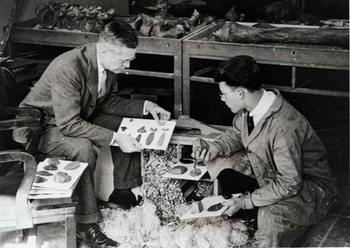 photo of archaeologists examining artifacts