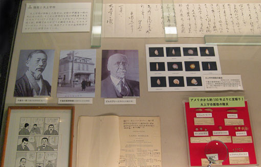 photo of malacology exhibit in Japan