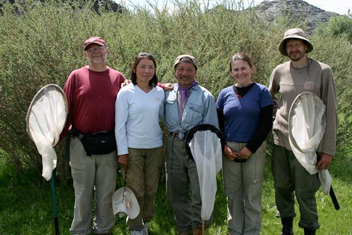 photo of entomologists in Mongolia