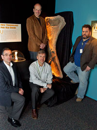 Jason Poole, Kenneth Lacovara, Ted Daeschler and James Tangorra next to a cast humerous of Paralititian