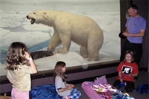 family bedding down next to the Polar Bear Diorama