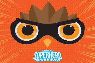 animal superhero weekend