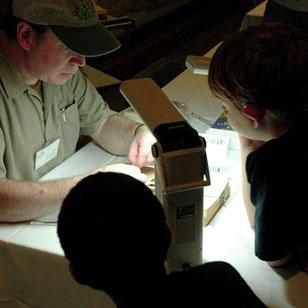 entomologist talk with museum visitors during Bug Fest