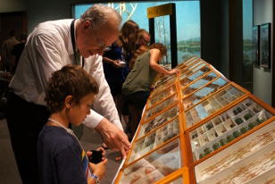 volunteer showing child insect cases