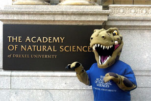 Eddie, the Academy mascot