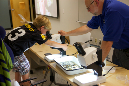 Child looks through Microscope in Entomology Dept