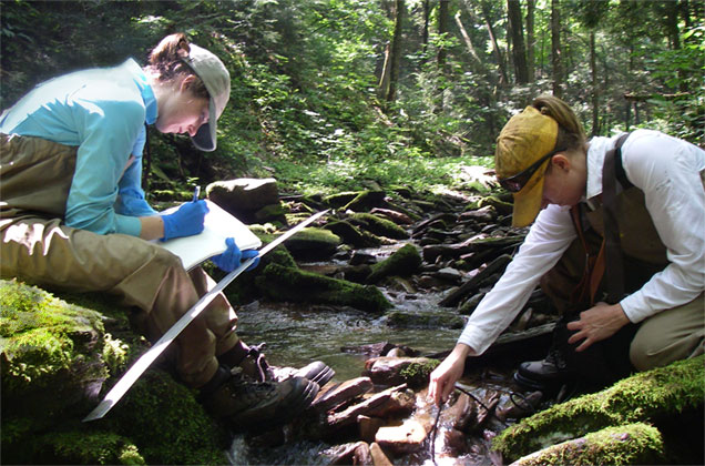 Patrick Center scientists measuring stream geomorphology in northeastern Pennsylvania