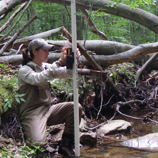 researcher studying in the field