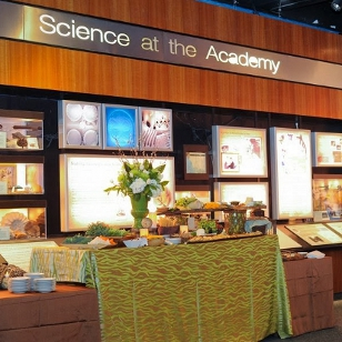 Art of Science Gallery
